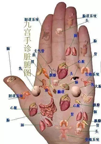 几个中医保健小动作,超简单,专门对付9种常见的身体疾病!