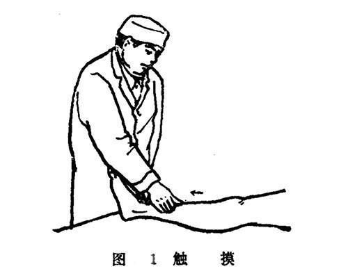 推拿师如何进行接骨复位呢?学会这8种手法,骨折伤痛轻松调理