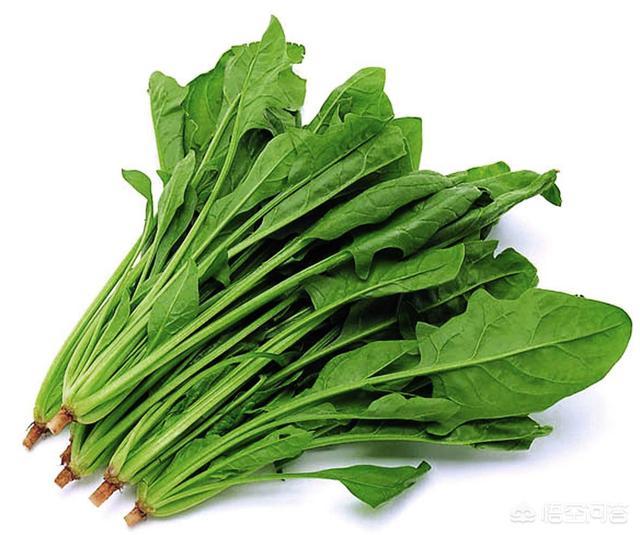 菠菜有哪些功效?