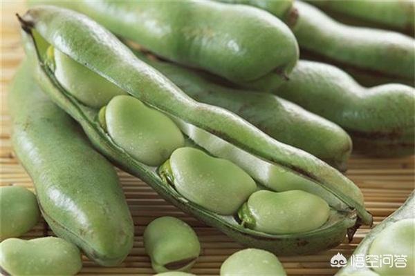 什么蔬菜没煮熟不能吃?