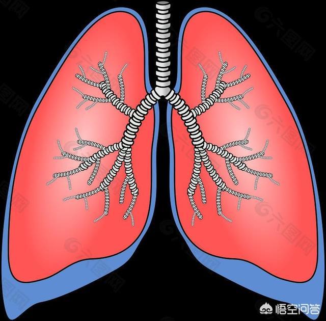 """睡觉时若有3个表现,说明肺已""""藏毒""""。会有哪3个表现?"""