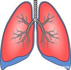 中医为什么认为肺是宰相中医 肺的宣发作用可体现于?