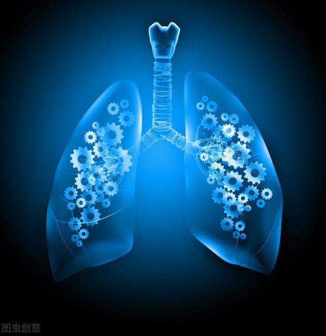 肺脏属金,为什么还会出现既主宣发又主肃降的问题