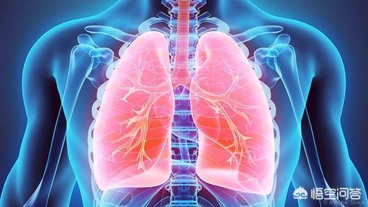 如何理解肺阴不足致虚火内生中医 肺的宣发作用可体现于,又说肺宣发或肃降失常均致痰饮?