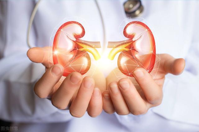 什么草药最能补肾气?