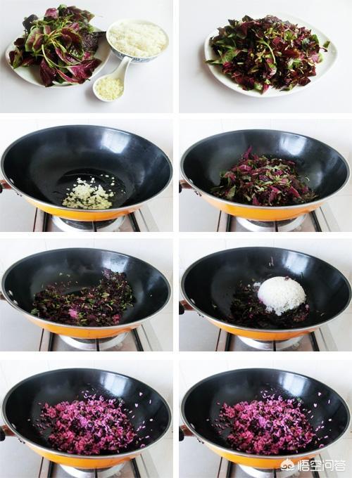 苋菜对身体有什么好处月经草的功效与作用,怎么吃好呢?
