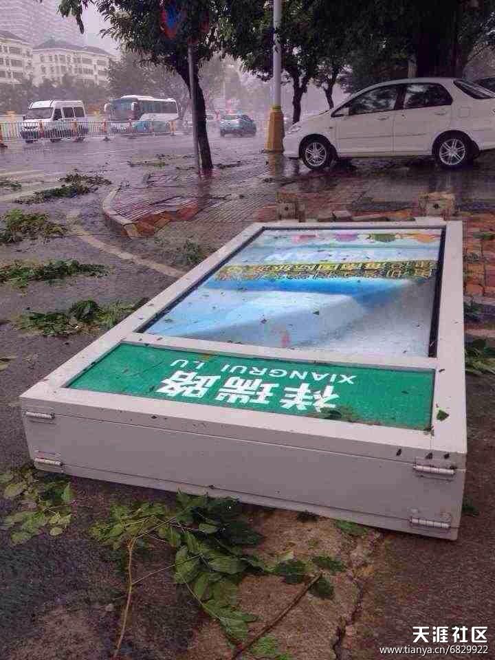 """历史最强台风""""海燕""""给海南带来重大损失中药海燕图片!(损失情况汇报贴)"""