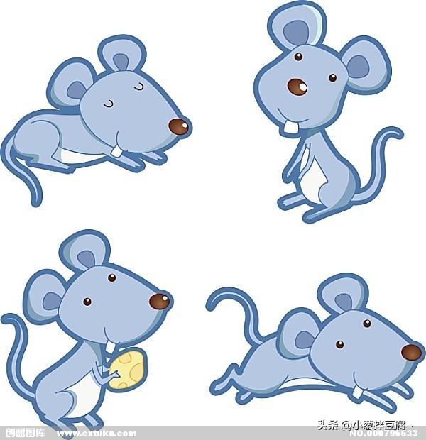 老鼠对人类有什么好处?