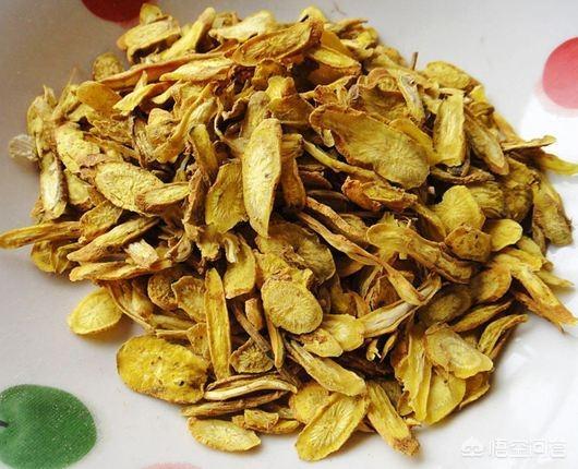 黄柏黄什么花图片是药材,黄连,黄芩有什么区别?