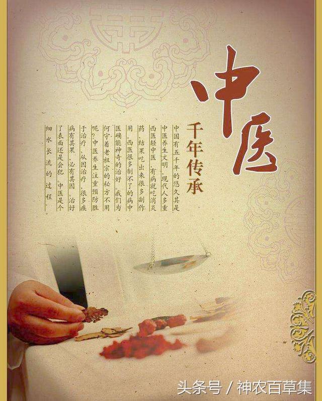 哲学中医:源远流长的中医文化