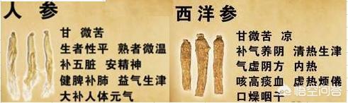 入秋以后北沙参的功效,人参、沙参和西洋参相比,哪个对身体更好?