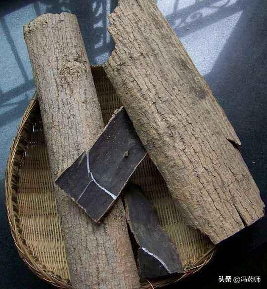 中药杜仲和杜仲树是否是一样的?有什么区别吗?