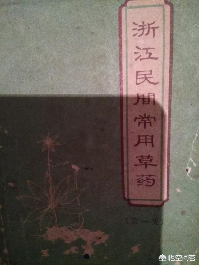 浙江台州温岭产哪些中药材?
