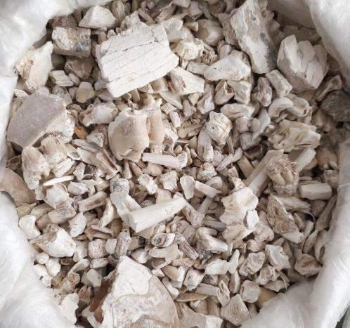 野外有种叫龙齿的药材矿石类中药图片,真的是龙的牙齿吗?它有什么作用?