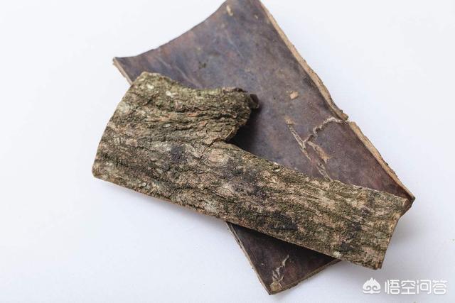 杜仲皮有什么作用肉桂杜仲功效与作用?