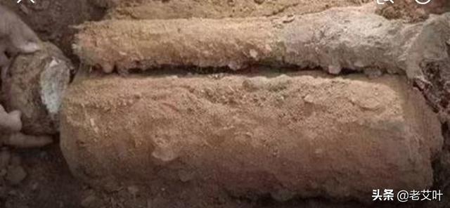 茯苓是著名的中药材中药苓皮的功效,你知道它的栽培技术与管理方法吗?