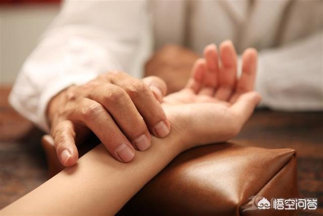 中医科子的功效,为什么中医把脉就能知道什么病?