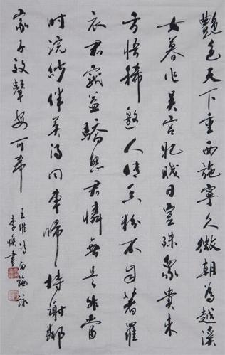 中国陇药文化,文化是什么