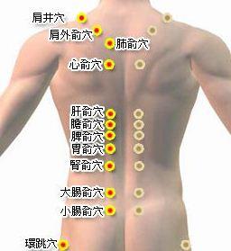 肚子拔罐减肥,肚子拔罐减肥示意图