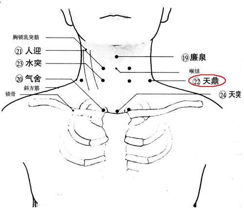 推拿手法治疗吞咽困难,侧方吞咽的名词解释