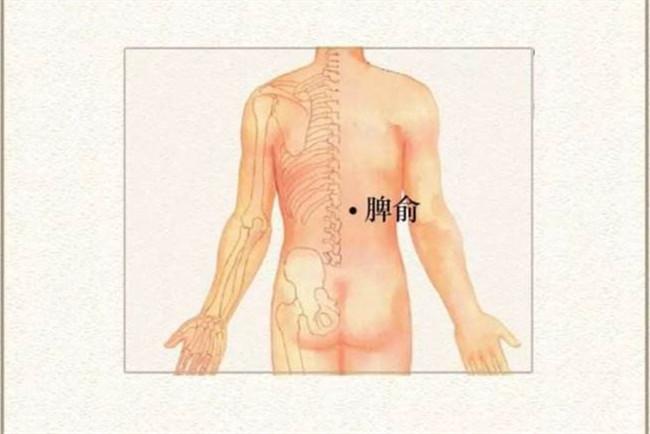 肚脐眼俩测拔罐的好处,肚脐周围穴位图解大全全图