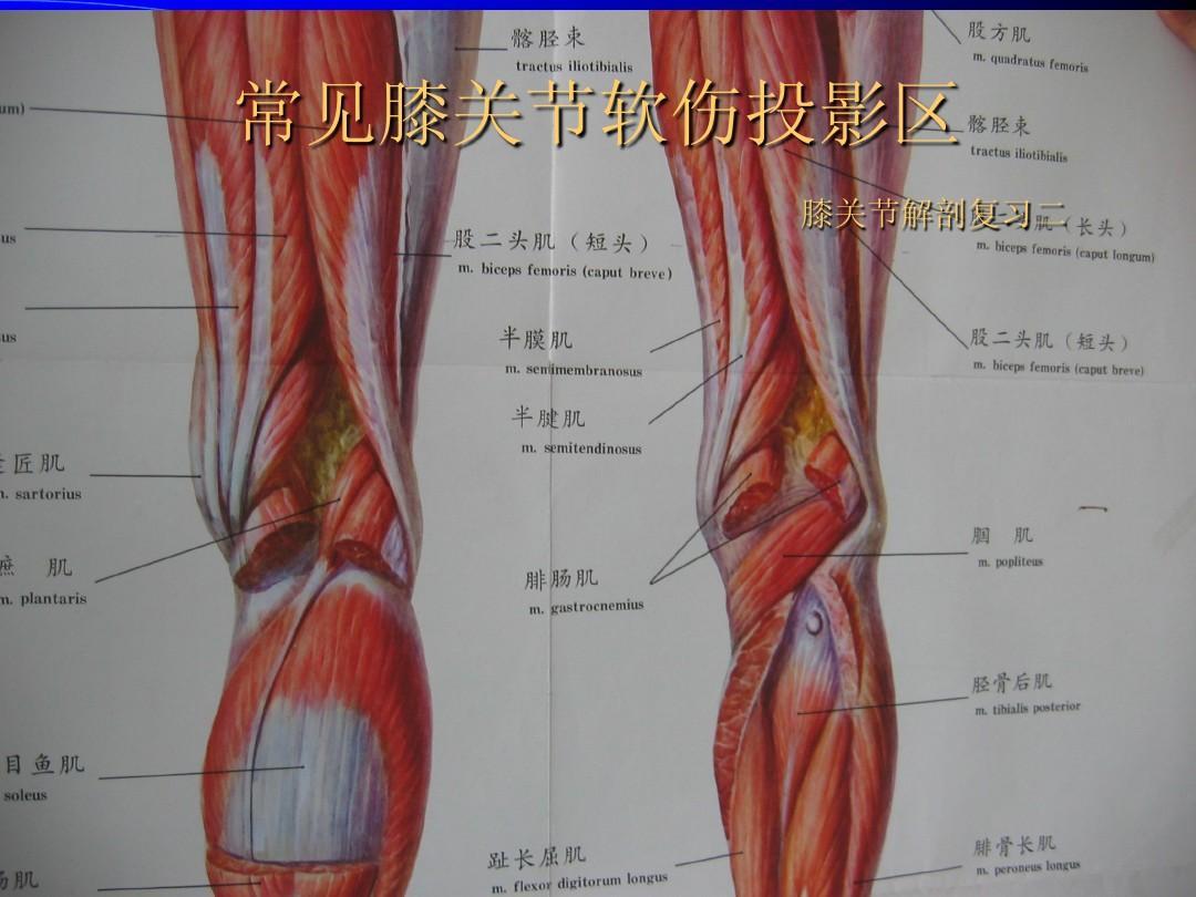 骨关节炎的临床治疗,治疗关节炎的13个偏方