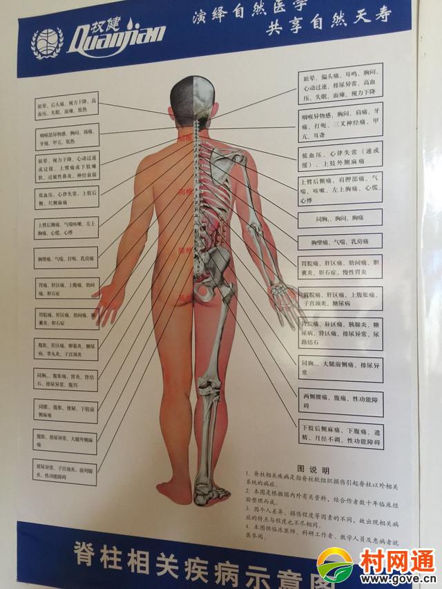 火疗背部,背部火疗的功效与作用