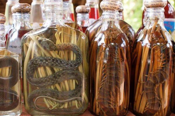 蛇泡的药酒功效与作用,酒乌梢蛇的功效与作用