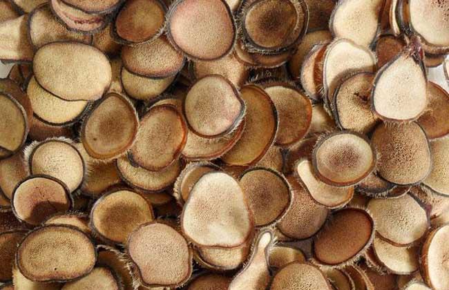 鹿茸山药酒的功效和作用,鹿茸人参枸杞泡酒的功效