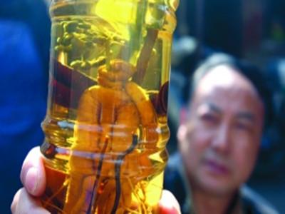 三蛇药酒的功效与作用,蛇酒的功效与作用